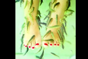 The dangers of fish pedicure