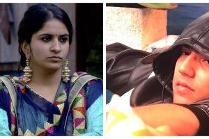 Bigg Boss 12, Day 72, November 27: Surbhi Rana questions Romil Choudhary's 'character'