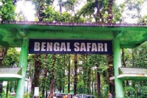 Bengal Safari: Stricter rules on entry to animal enclosures