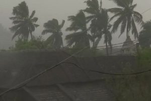 Tamil Nadu cyclone toll rises to 45, opposition alleges poor relief work