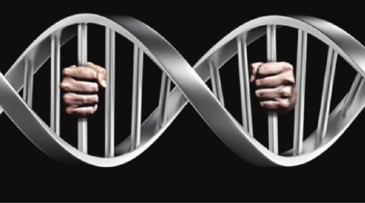 Science, Pakistan, DNAtest,Qanoon-i-Shahadat law, Punjab, DNAevidence