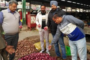 Over 75 quintals of fruits, vegetables destroyed