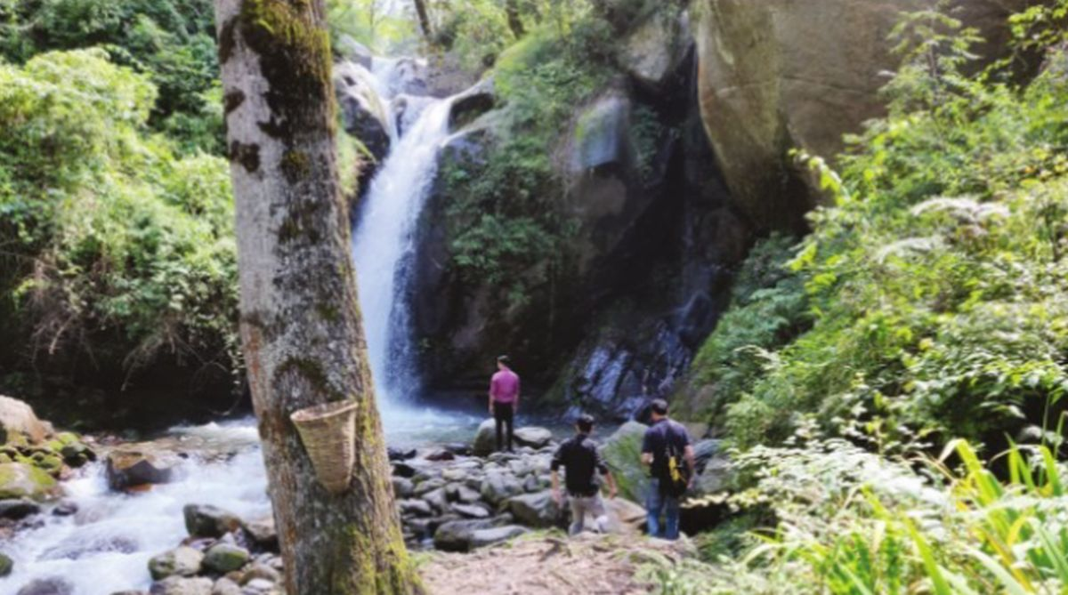 Manali: Where the grass is greener