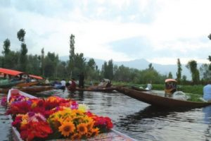 The sunrisers of Kashmir