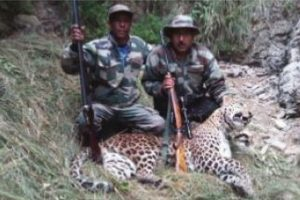 Fresh operation to eliminate man-eater leopard in Uttarakhand