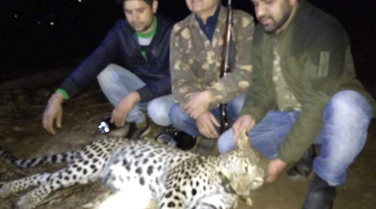 Bageshwar, Uttarakhand, female leopard, man-eater leopard