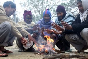 Biting cold grips north India | Karnal records 0 degree Celsius, AQI 'severe' in Delhi