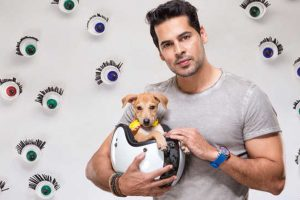 INTERVIEW | Dino Morea on Pet Fed 2018: Why should humans have all the fun?