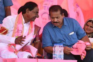 Telangana polls: TRS eyes Seemandhra opportunities