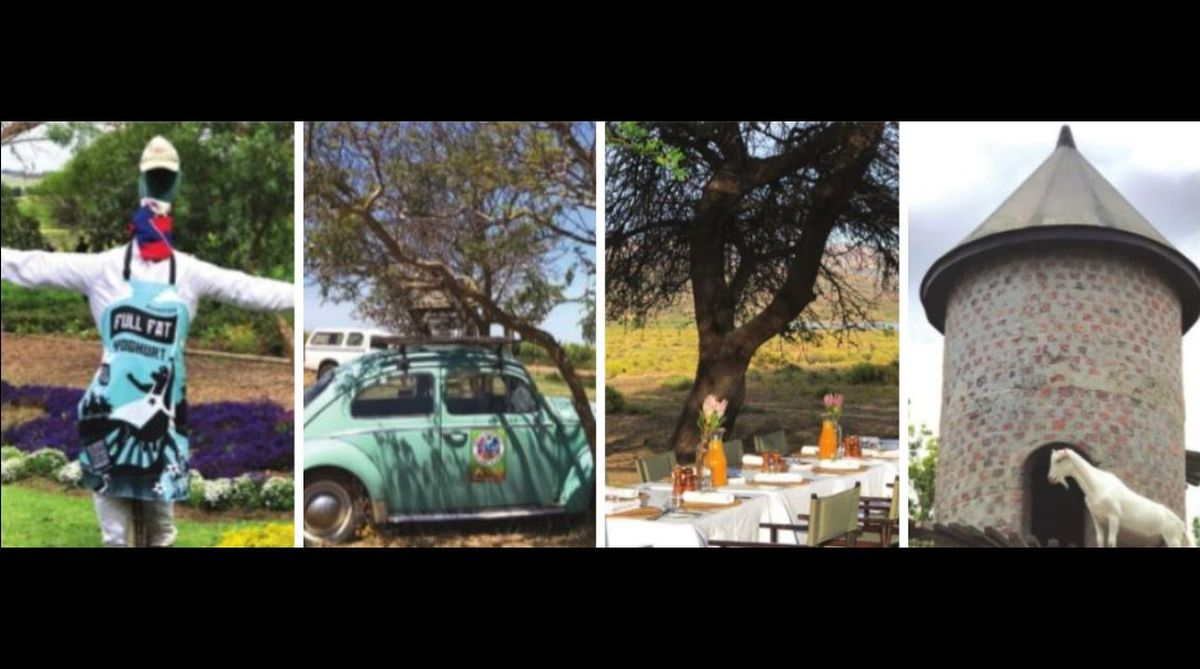 South Africa, Cape Peninsula, Cape Town,Ken Forrester,Beryl Back,Biodynamic Estate,False Bay Sauvignon Blanc