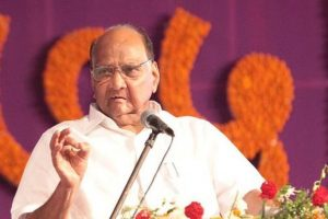 People reject BJP's attacks on Nehru-Gandhi family, institutions: Sharad Pawar