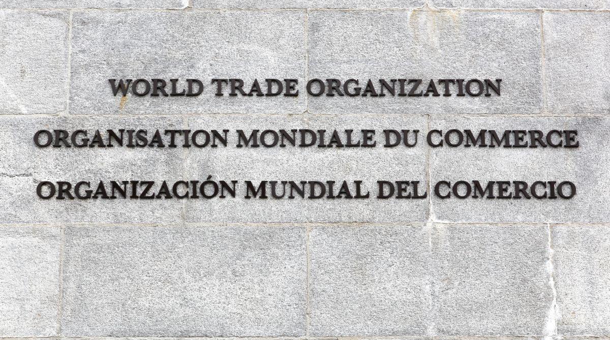 Steel, WTO, World Trade Organisation, Safeguard duty