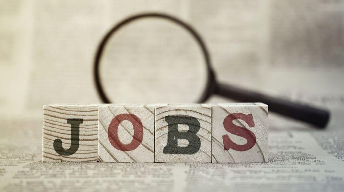 jobs,Murli Manohar Joshi, BJP,job requirements,Reserve Bank,Randstad India, farm sector