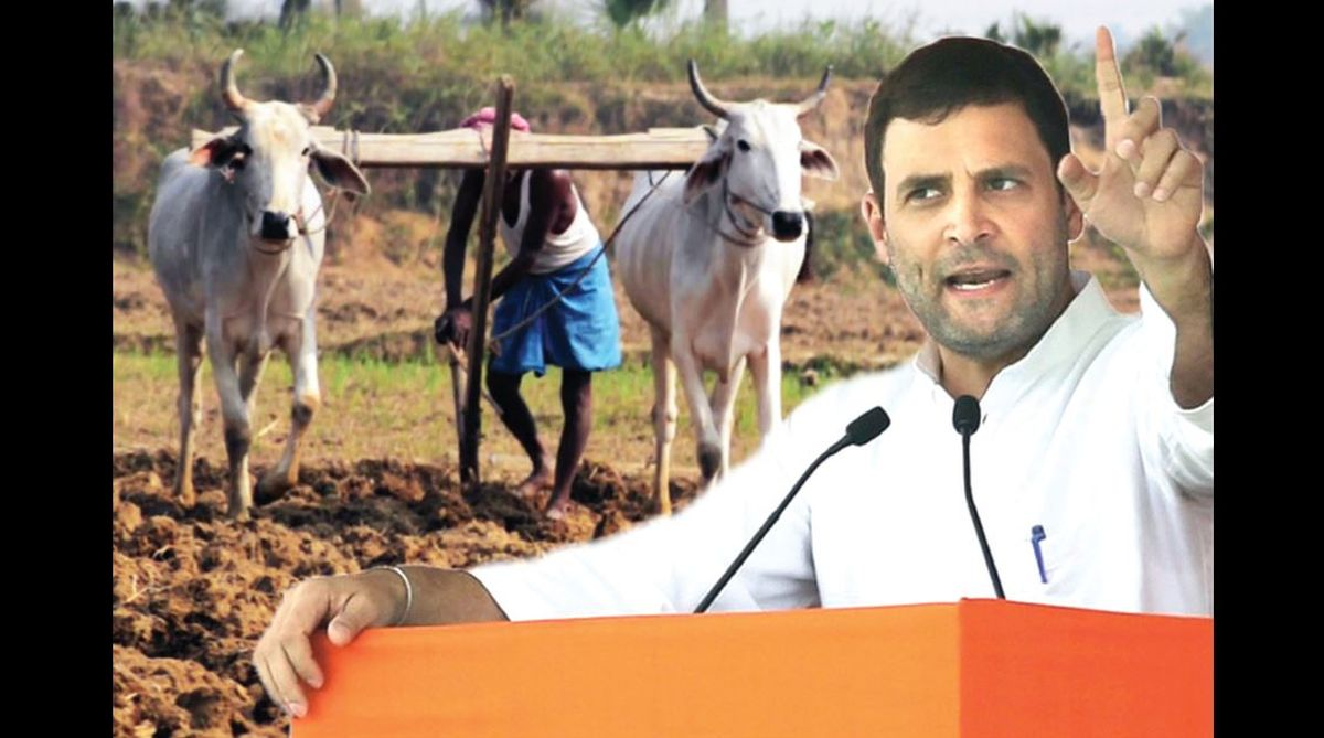 Farmers,loan waivers,industrial growth,agro-ecology, food security,land reforms
