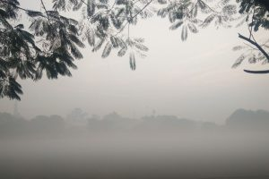 Cold Thursday morning in Delhi; air quality 'very poor'