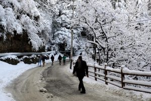Himachal Pradesh gets relief from snow, rain