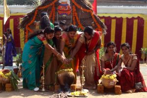 Pongal celebrated in Tamil Nadu with traditional fervour