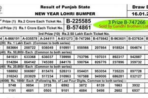Punjab Lohri Bumper 2019 lottery result declared; Rs 2-crore first prize goes to ticket no. B-225585