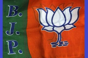 BJP received 12 times more than all National Parties in donations