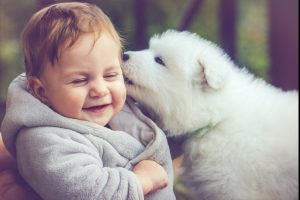 Indian startups that every pet parent needs to know about
