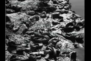 On Mauni Amavasya at 1954 Kumbh Mela, a stampede killed 1000; lone photographer lived to tell the tale