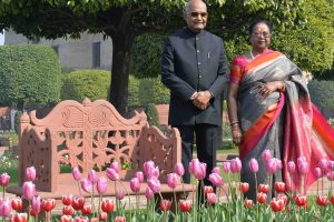 Udyanotsav begins, Mughal Gardens open for public from February 6 to March 10