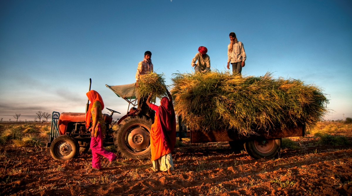 Interim Budget 2019, Budget 2019, PM Kisan Samman Nidhi, Farmers