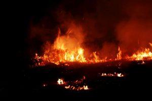 Madrasa fire leaves 15 children injured in Muzzaffarnagar