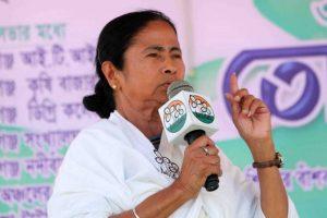Bengal CM Mamata Banerjee greets people on Mother Language Day