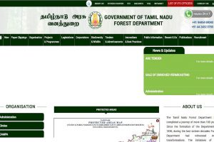 TN Forester results declared at forests.tn.gov.in | Direct link to PDF here