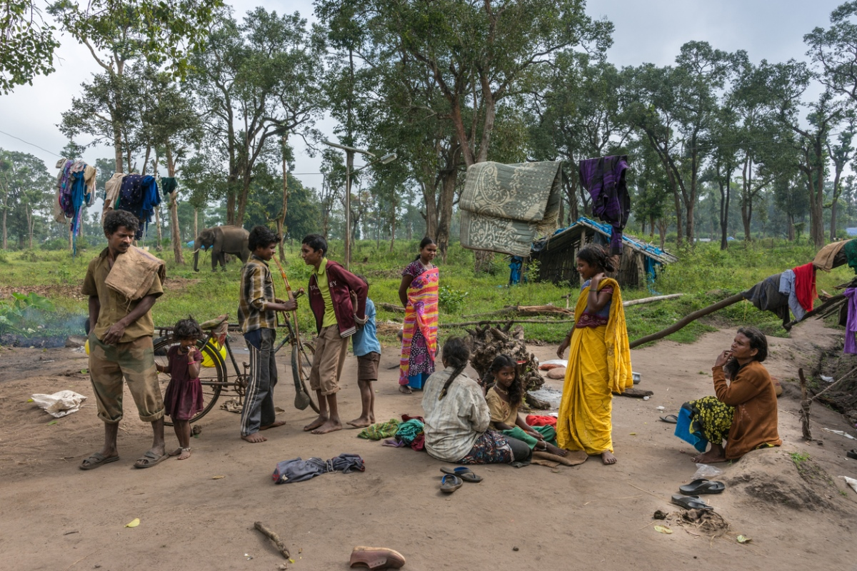 Indian Forest Act, Tribal right, Forest Cover, Forest Encroachment, Mining Industry, Adivasi