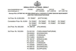 Kerala Karunya Plus KN 256 lottery results declared on keralalotteries.com | First prize won by Kottayam resident
