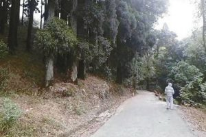 Dowhill 'ghost stories' draw visitors to Kurseong