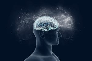 Human brain can detect Earth's magnetic field
