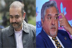 Nirav Modi, Mallya to share same cell in Mumbai jail? 'There is space', quips UK judge