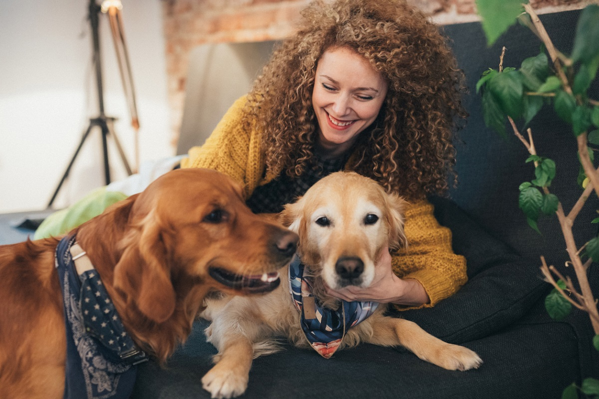 Things to keep in mind before getting a second dog