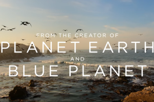 Our Planet | Official Extended Trailer [HD] | Netflix