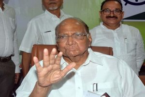 NCP president 'hurt' as leaders shift allegiances ahead of Maharashtra Assembly polls