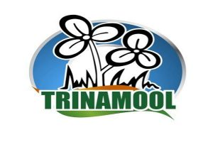 Mamata's party removes Congress from its logo, now just Trinamool