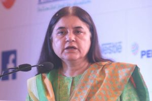 It's give and take, vote for me or don't expect help: Maneka Gandhi to Muslims in Sultanpur