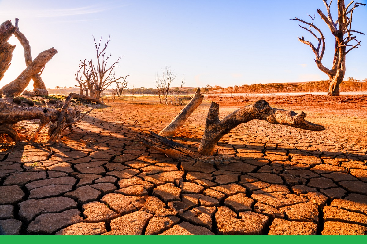 State of Drought, India, Gujarat, Comptroller and Auditor General, Kutch