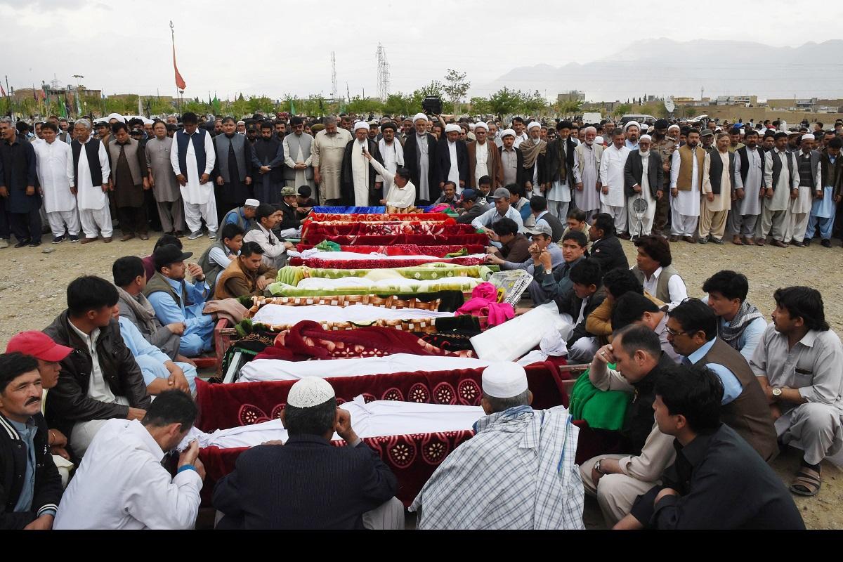 Symptom of a canker, Balochistan, Quetta, Imran Khan, Pakistan, Afghanistan