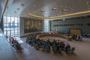 India pushes for African right to permanent UNSC seat