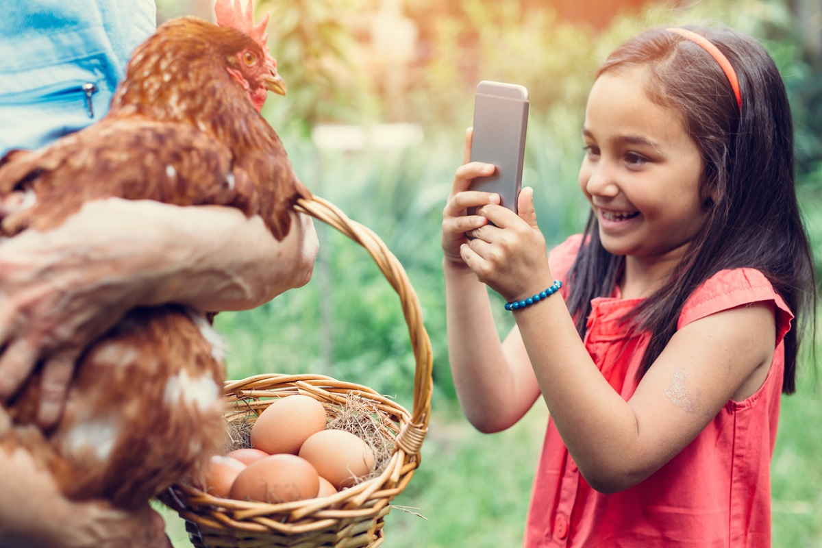 Everyone who eats an egg has taken part in the killing, Indian, Carbon dioxide, Hitler, American Veterinary Association, British Egg Industry, United Egg Producers, United States, University of Leipzig