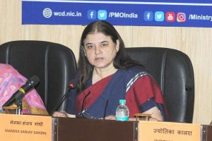 After 'jobs for votes' row, Maneka Gandhi now announces 'ABCD' grading of voters