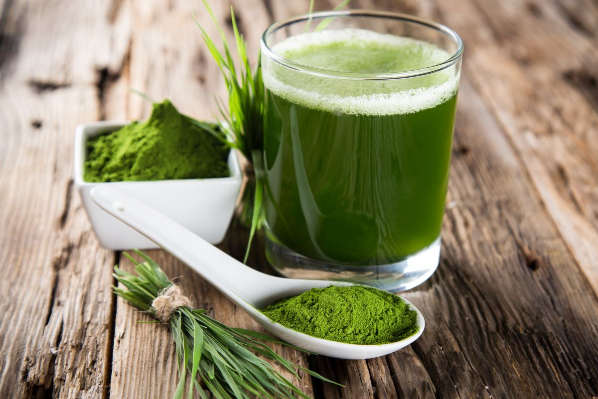 Get a daily dose of wheatgrass to improve your health