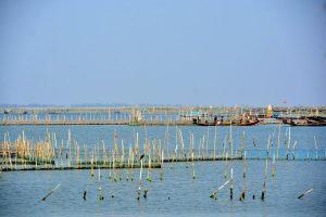 Chilika Lake contours change after Cyclone Fani, gets four new mouths