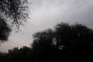Delhi weather: Overcast sky brings temperatures down