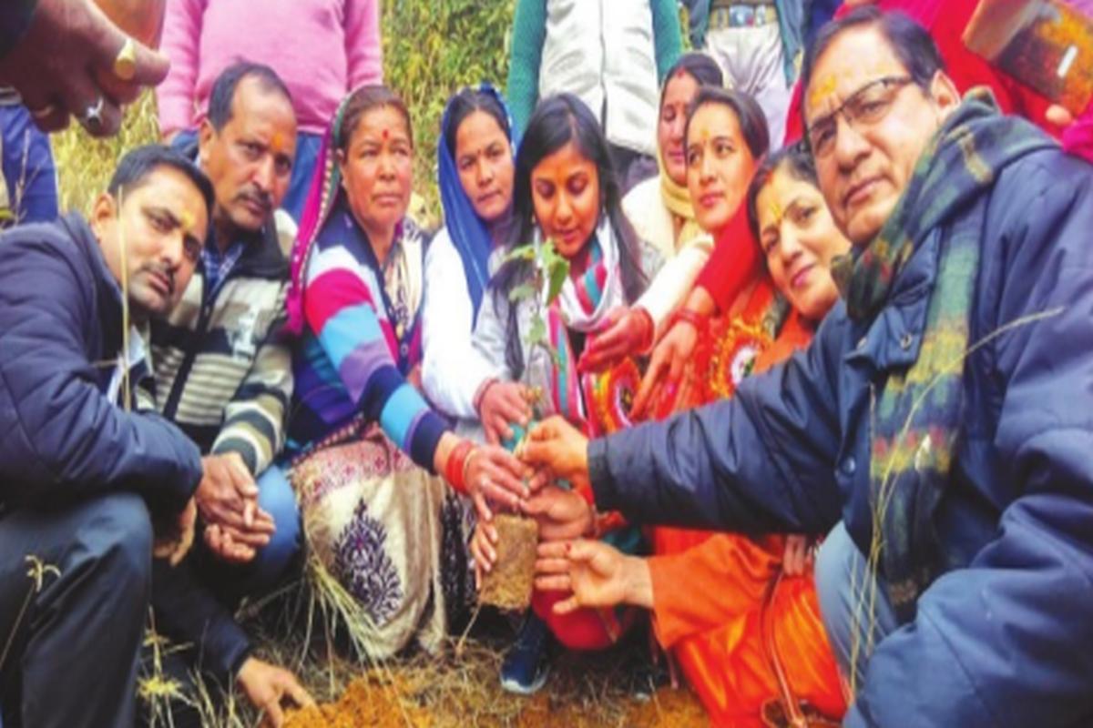 Maiti Andolan: Plant a happy memory