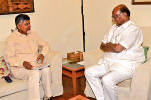 Chandrababu Naidu meets Sharad Pawar, Rahul Gandhi a second time in Delhi